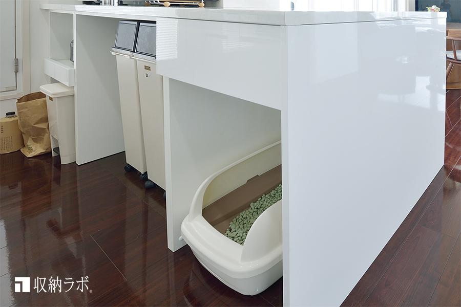 ゴミ箱と猫のトイレを収納