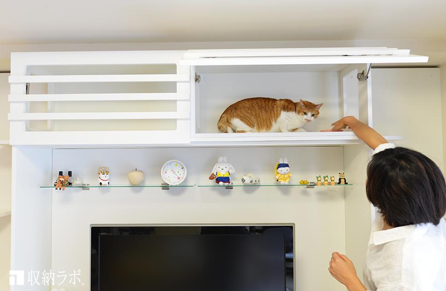 桟のついた扉で、開けても閉めても猫は見えます。